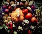 Native_Foods
